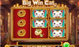 Big Win Cat Slot - Casumo Casino