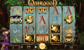 Wishwood Slot