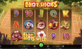 hot shots slot