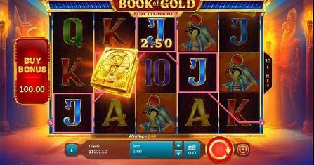 Book of Gold Multichance Slot mobil